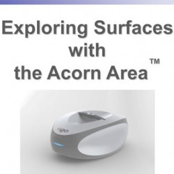 Exploring Surfaces with Acorn Area